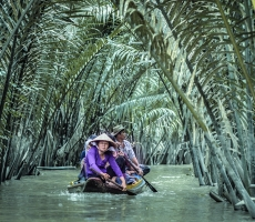 Sampan ride amongst the mangrove palm in MyTho Mekong Delta Vietnam