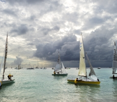 5O5 Sail Boats Returning from Race at Carlisle Bay, Barbados