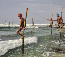 The Stilt fishermen brave the rough waters, throughout the day to have their silver catch, in the Southern coasts of Sri Lanka.