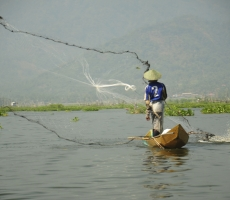 Fisherman in Rawa Pening Lake,Middle Java Province