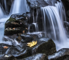 Autunno alle cascate
