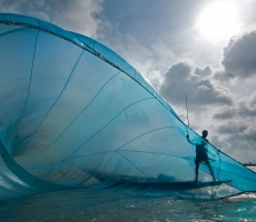 Fishing in big blue net